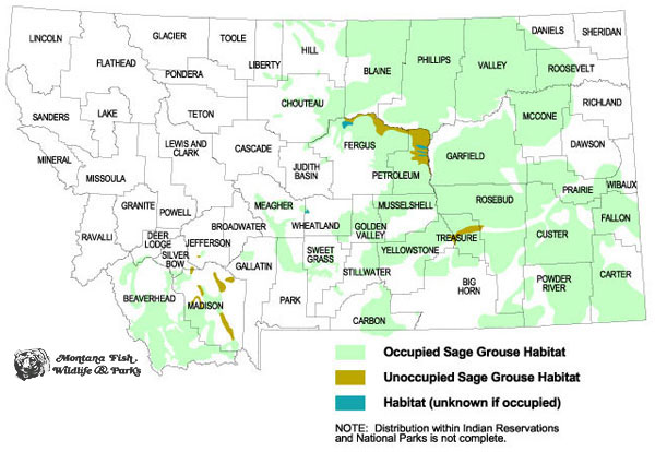 Greater Sage-Grouse - Montana Field Guide on david eddings maps, lds mission maps, artistic maps, safehold series maps, classic d&d maps, high quality maps, full screen maps, bird migration maps, snowy egret maps, pennsylvania grouse hunting maps, unusual maps, ruffed grouse habitat maps, fictional maps, sage leaf, old vintage maps, star gazing maps, cartography maps, role playing maps,