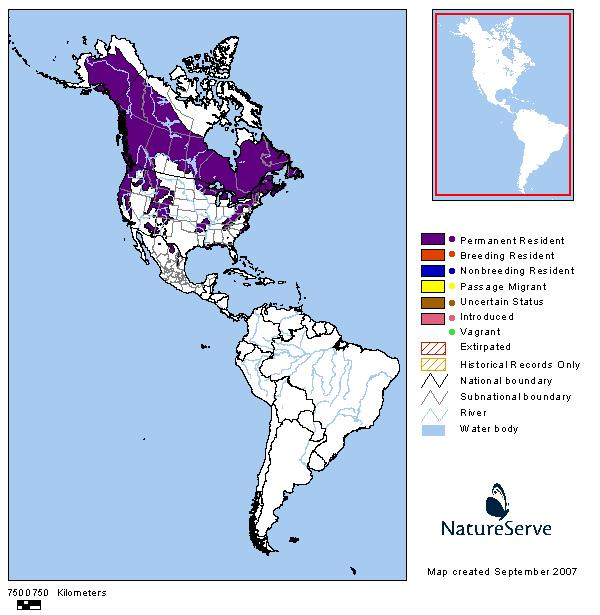 Black bear habitat map - photo#30